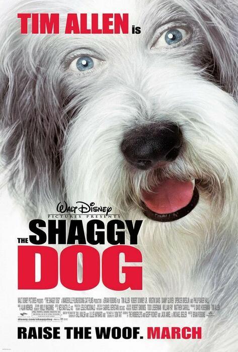 The Shaggy Dog - Hör mal wer da bellt - Bild 17 von 17