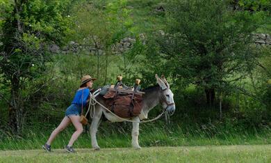 Mein Liebhaber, der Esel & Ich mit Laure Calamy - Bild 5