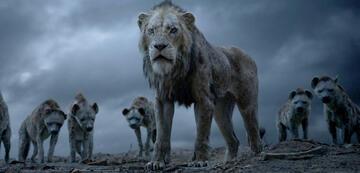 Der König der Löwen: Scar