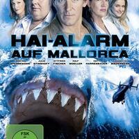 Hai-Alarm Auf Mallorca Stream