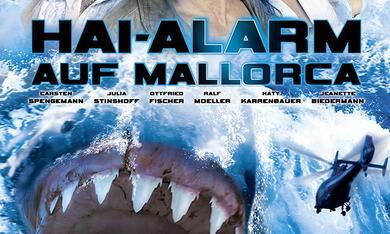Hai-Alarm auf Mallorca - Bild 6