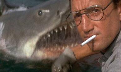 Der weiße Hai mit Roy Scheider - Bild 1