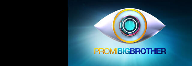Promi big brother banner