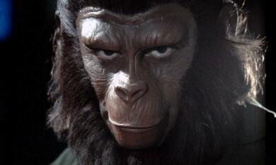 Eroberung vom Planet der Affen - Bild 3