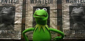 Bild zu:  Der böse Frosch in Muppets Most Wanted