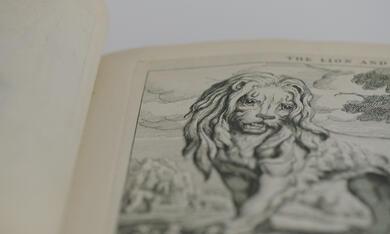 The Booksellers - Aus Liebe zum Buch - Bild 2