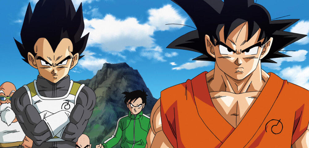 Son Goku Und Vegeta