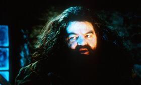 Harry Potter und der Stein der Weisen mit Robbie Coltrane - Bild 19
