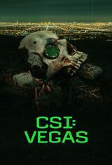 CSI: Vegas - Staffel 1 - Poster