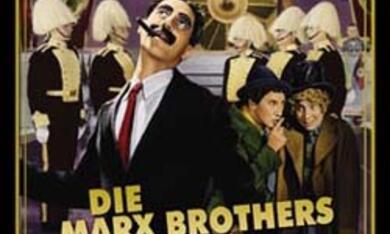 Die Marx Brothers im Krieg - Bild 2