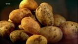 Kartoffelgeschichten - Eine Knolle erobert die Welt - Poster