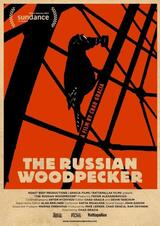 Der russische Specht - Poster