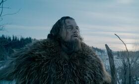 Leonardo DiCaprio in The Revenant - Bild 228