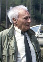 Norbert Gastell