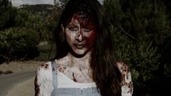 Zombies - An Undead Road Movie