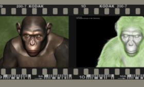Planet der Affen: Prevolution - Bild 19