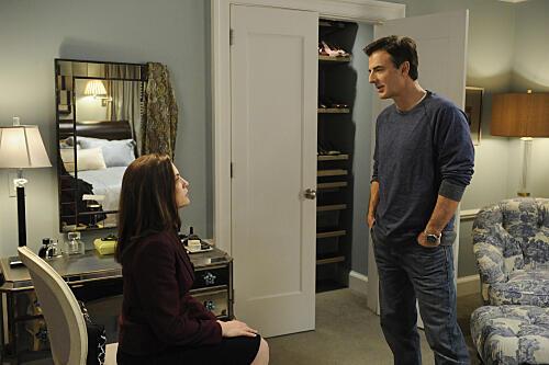 Good Wife - Staffel 1