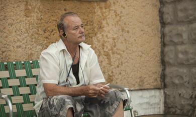 St. Vincent mit Bill Murray - Bild 10