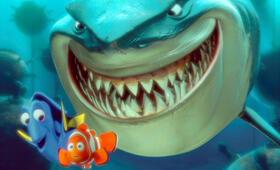 Findet Nemo - Bild 19
