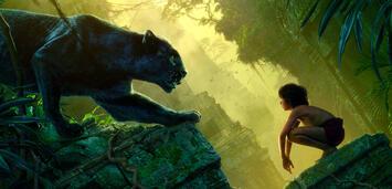 Bild zu:  Das Dschungelbuch