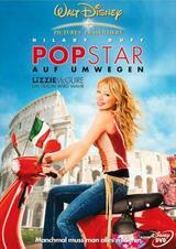 Popstar auf Umwegen - Poster