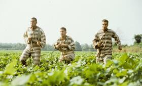 O Brother, Where Art Thou? - Eine Mississippi-Odyssee mit George Clooney, John Turturro und Tim Blake Nelson - Bild 64