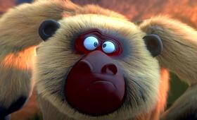 Die Dschungelhelden - Das große Kinoabenteuer - Bild 9