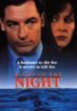Schrei in der Nacht