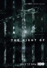 The Night Of: Die Wahrheit einer Nacht