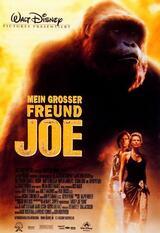 Mein großer Freund Joe - Poster