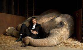 Robert Pattinson in Wasser für die Elefanten - Bild 176