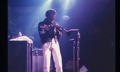 Miles Davis: Birth of the Cool - Bild 4