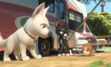 Bolt - Ein Hund für alle Fälle - Bild 5