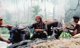 Apocalypse Now mit Dennis Hopper - Bild 31