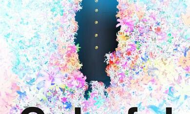 Colorful - Bild 6