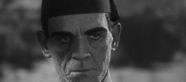 Boris Karloff wird 125 Jahre alt. In Die Mumie sind es mehrere tausend
