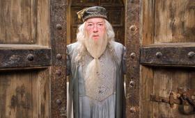 Harry Potter und der Orden des Phönix mit Michael Gambon - Bild 9
