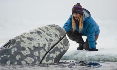 Der Ruf der Wale mit Drew Barrymore - Bild 3
