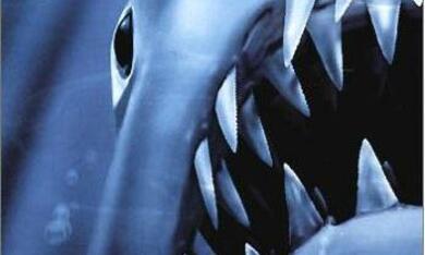 Der weiße Hai III - Bild 3