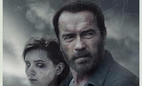 Arnold Schwarzenegger - Bild 265