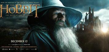 Bild zu:  Der Hobbit 2 - Smaugs Einöde
