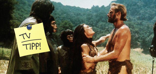 Planet Der Affen Im Tv