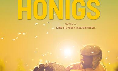 Land des Honigs - Bild 5