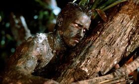Predator mit Arnold Schwarzenegger - Bild 7