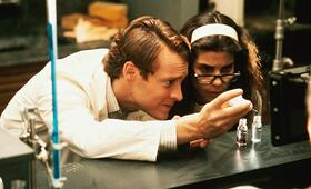 Love Potion No. 9 - Der Duft der Liebe mit Sandra Bullock und Tate Donovan - Bild 134