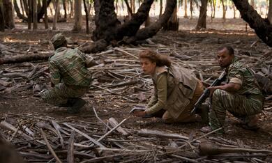 A Private War mit Rosamund Pike - Bild 11