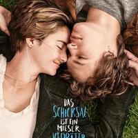 Beste Filme 2014 Dvd
