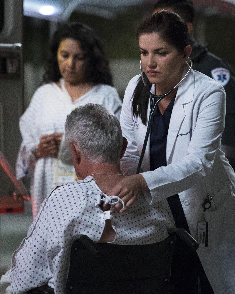 Grays Anatomy Staffel 13