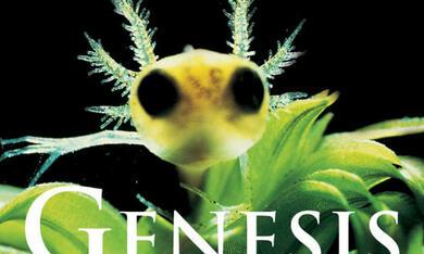 Genesis - Bild 1