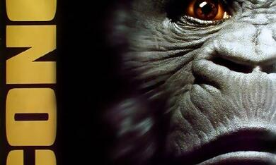 Congo - Bild 8